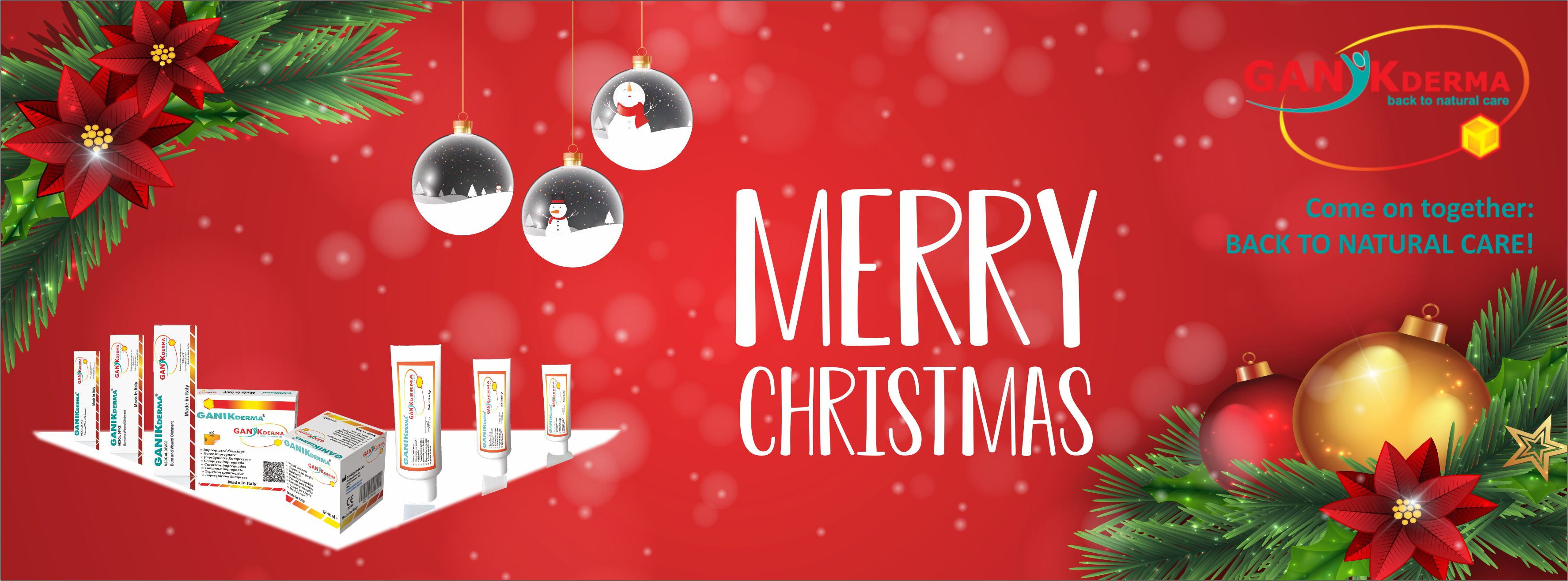 Facebook Cover ganikderma Merry Christmas 2018